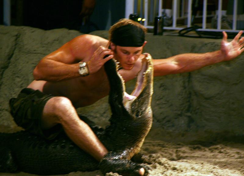 okalee village gator 344