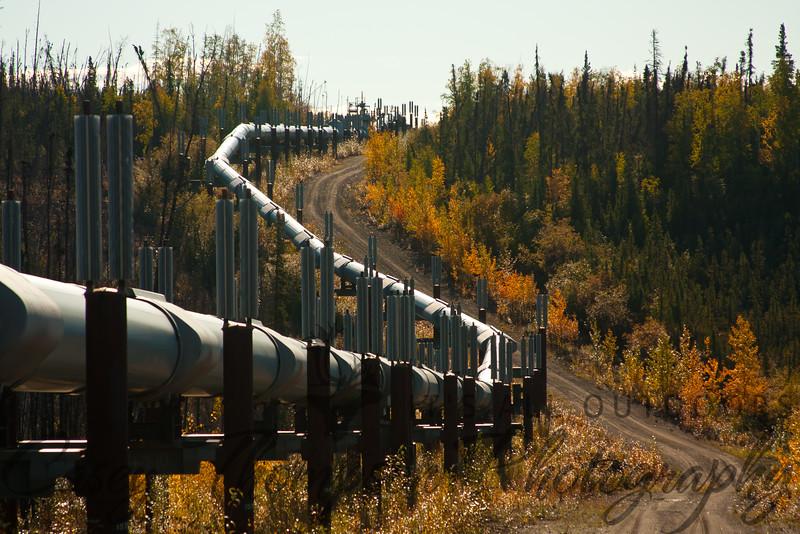 Dalton Highway Pipeline-7392