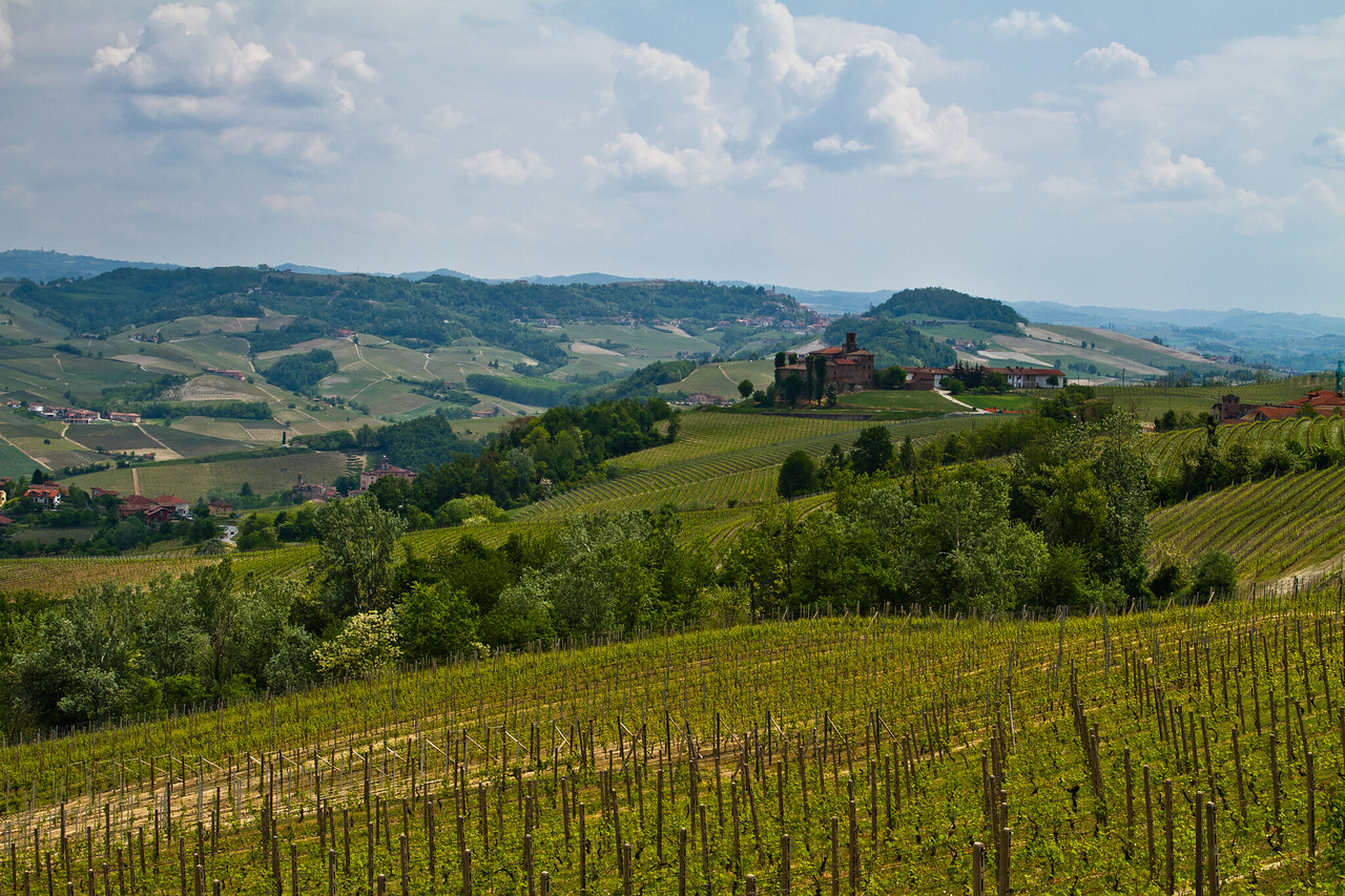 Standing about 1km from the Cerequio vineyard in the winegrowing region of Barolo, one can see this view, looking South/Southeast. In the distance, in the upper third of the picture, you can see a gap between two opposing hills. This gap is where the road from Castlglione Falletto passes through to the small village of Barolo
