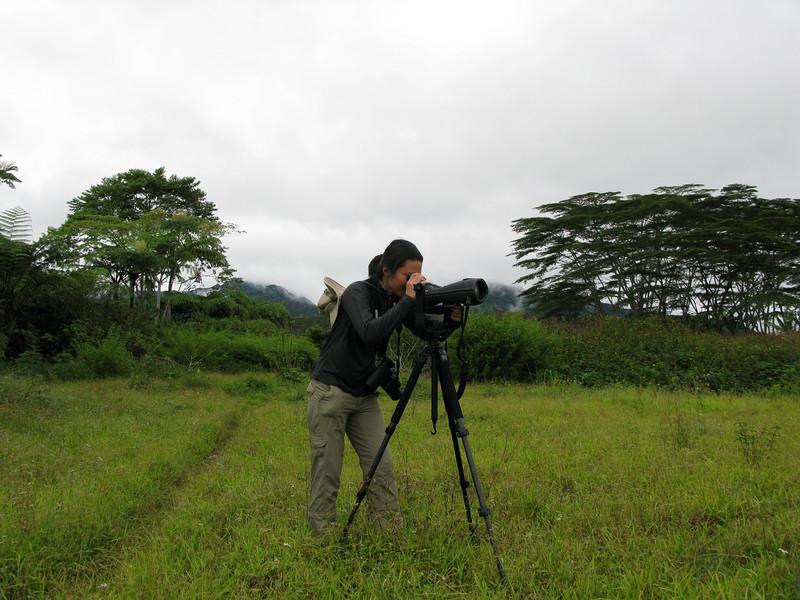 Mt. Kitanglad, Bukidnon January 2009<br /> <br /> This is a Swarovski scope.