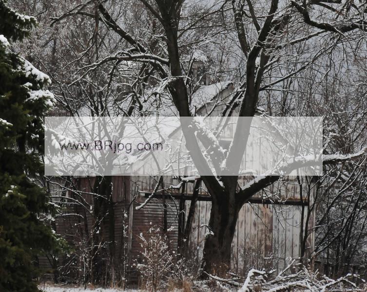 winter 09 pics_0065