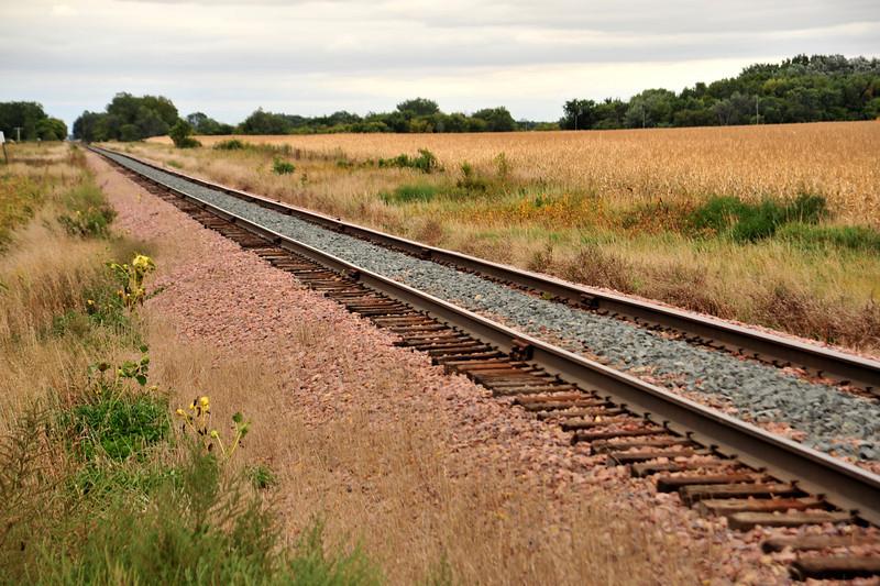 RR Tracks - 03