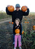 Three country pumpkins.