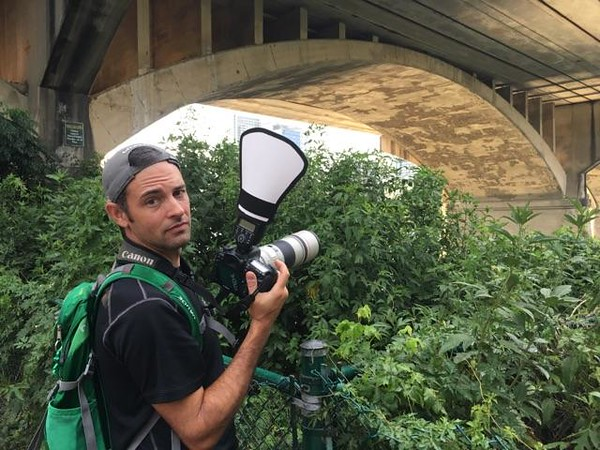 Shooting free-tailed bats at the famous Congress Street bridge in Austin, Texas, 2017. Photo: R. Matlack.