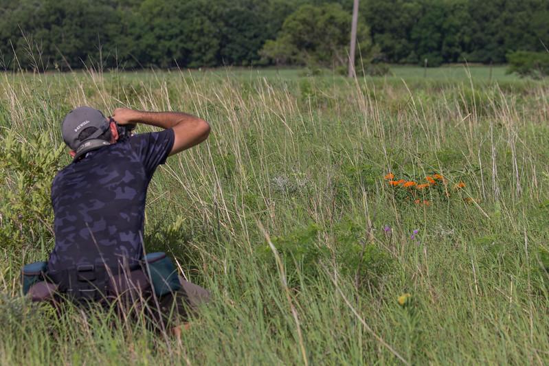 Danny in Kansas tallgrass prairie, summer 2017. Photo by R. Warrier.