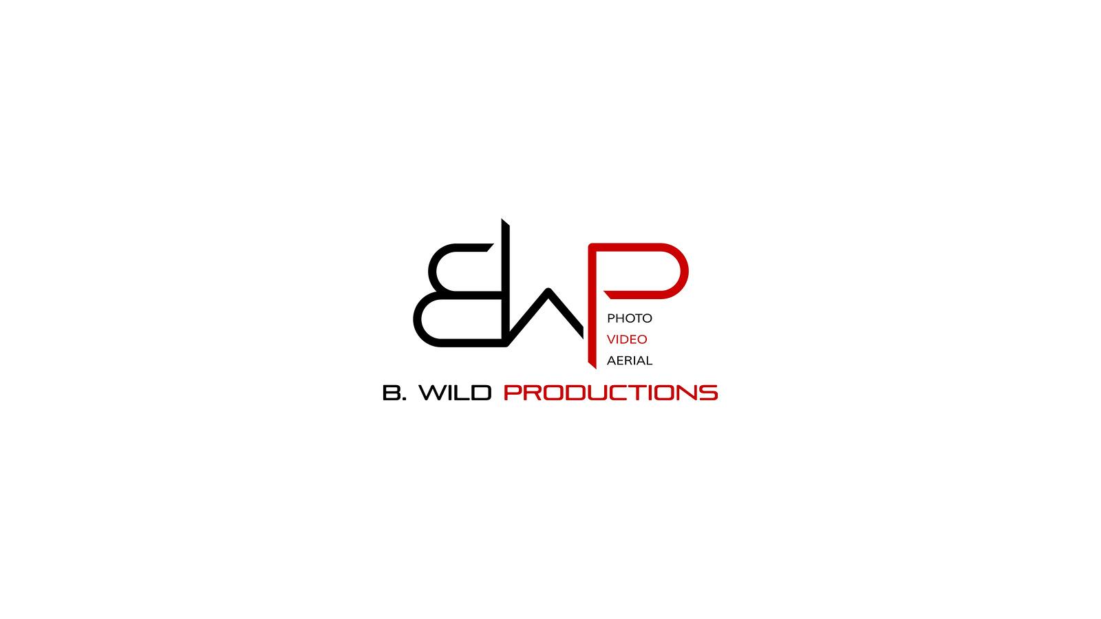 BWP 2015 Logo | Youtube