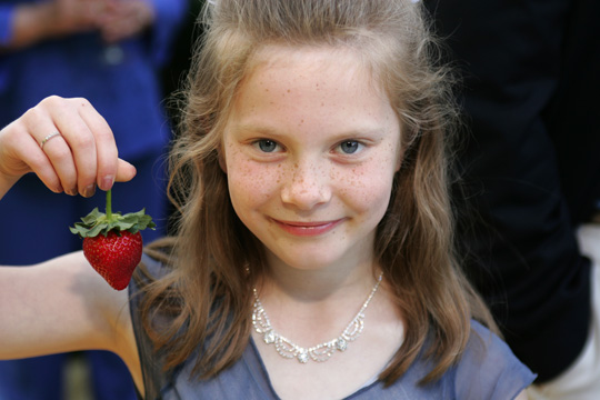 Strawberry Girl small