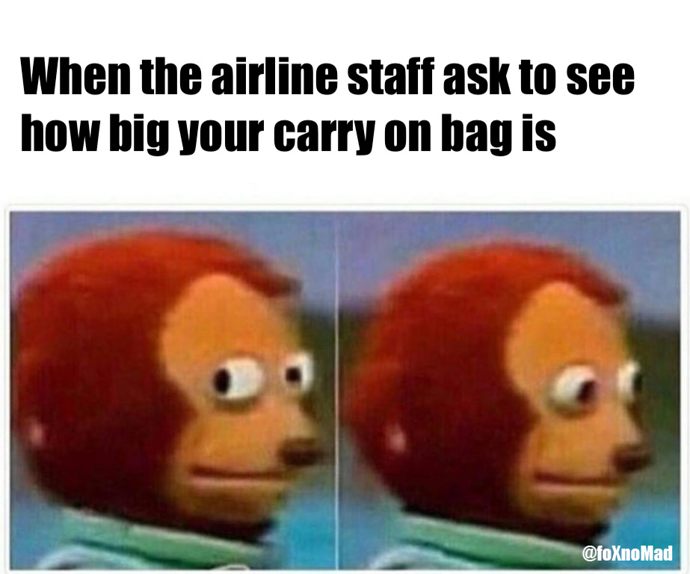 baggage fees meme