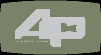 AP_logo_moss
