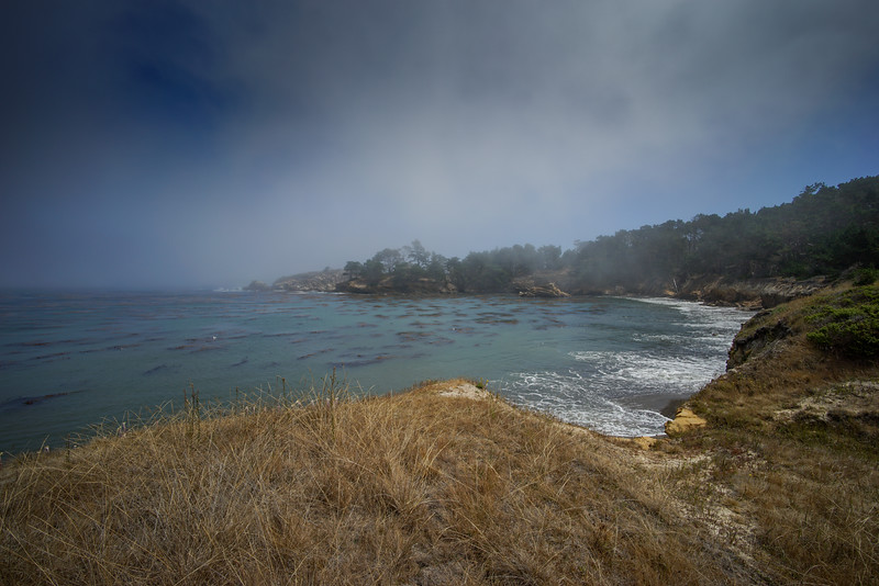 Point Lobos-20150728-037