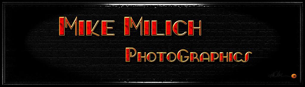 _msm1398 2014 logo v4