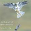 ArtCraftBirdPhotographyCover