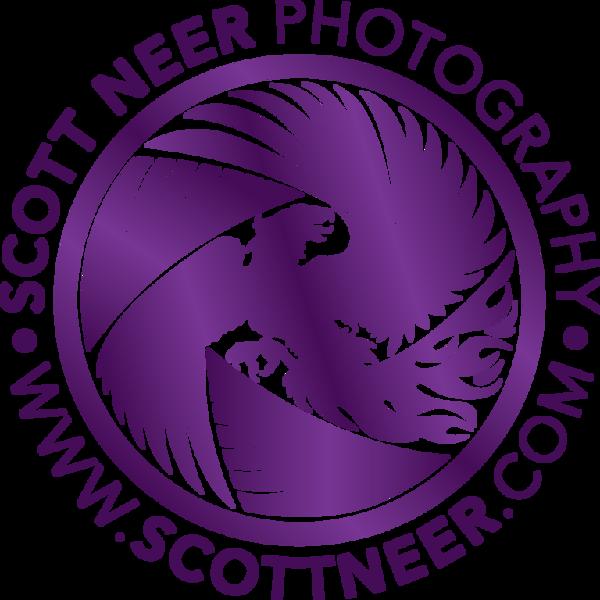 ScottNeer-Logo-Purple-Gradient-Round
