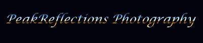 pr_logo2