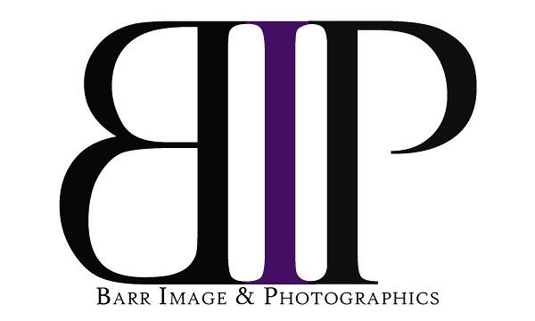BIP Mini Logo 1