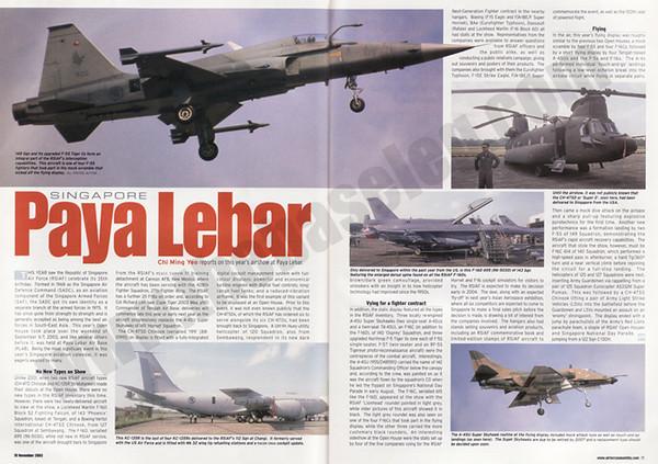 AFM_Nov2003art