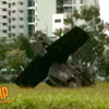 ah64d-rsaf_crash_2