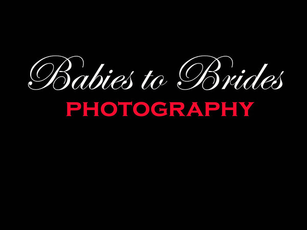 BABIES TO BRIDES LOGO #2