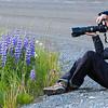 jackie_alaska_flowers
