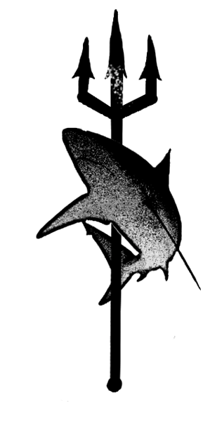 logo-white shark