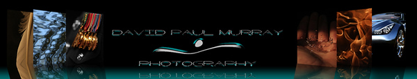 Picture reflection Banner2B