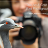 BirdPhotographySlideOne