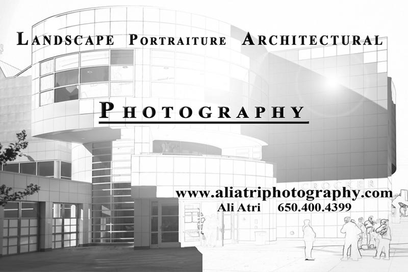 www aliatriphotography