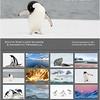 2018-Antarctica-Mini-WebVersion