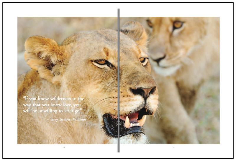 Wildlife Conservation Network