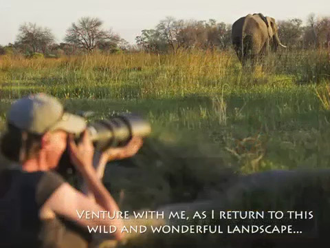 """Back to Botswana"" 2013 Photographic Safari Video Promo"
