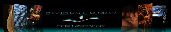 Picture reflection Banner2 copy