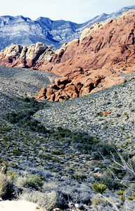 Red Rock Part, Nevada