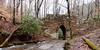 Poinsett Bridge, Greenville County, South Carolina