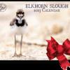 Elkhorn_Slough_2013_Calendar