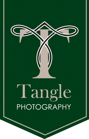 tangle_green_pendant408x638