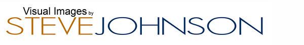 Vis Image logo banner 6