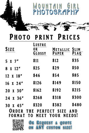 4x6 Price Cards [Photo Prints 2016]