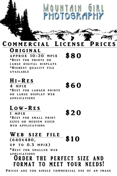 Commercial Download Price Sheet
