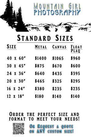4x6 Price Cards [Standard Sizes 2016]