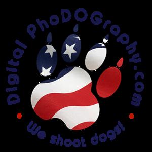 Circle Logo w-flag