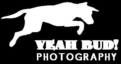 Yeah Bud Logo white