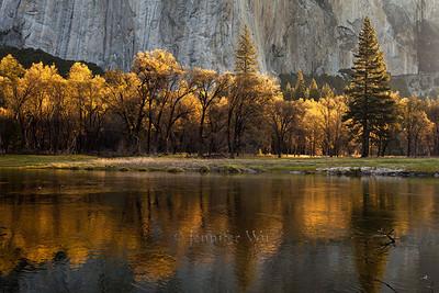 20100512_Yosemite_078