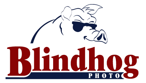 Blind-Hog-Logo-500