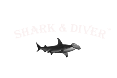 Shark & Diver Graphic PNG White 4 inch