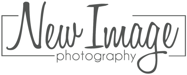 2015 gray logo