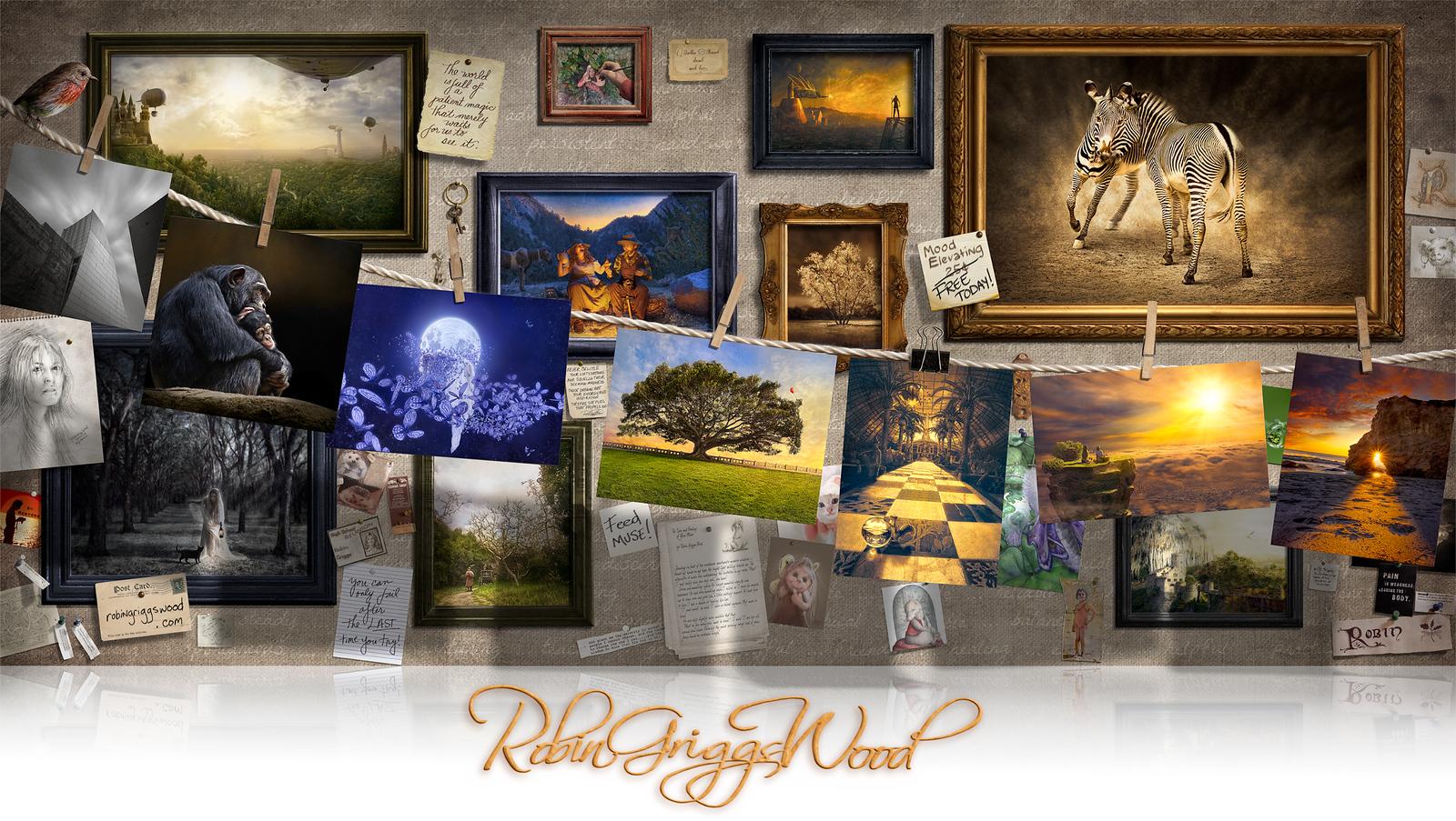 RGW_darkroom_imagebanner_cover-v2