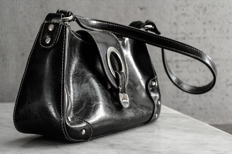 DSC_0295 copy purse