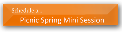 Schedule Spring  Mini session PNG
