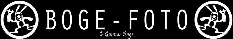 Bogefoto logo
