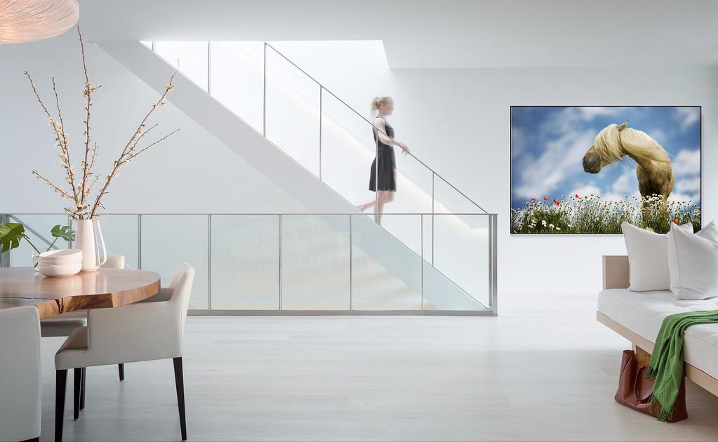 interior-oxovisuals-wallart2